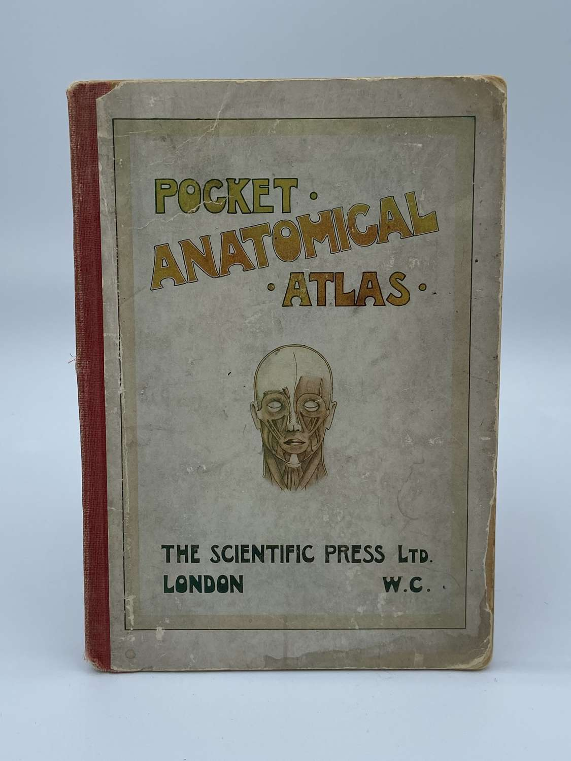 Edwardian 1917 Pocket Anatomical Atlas Of The Human Body