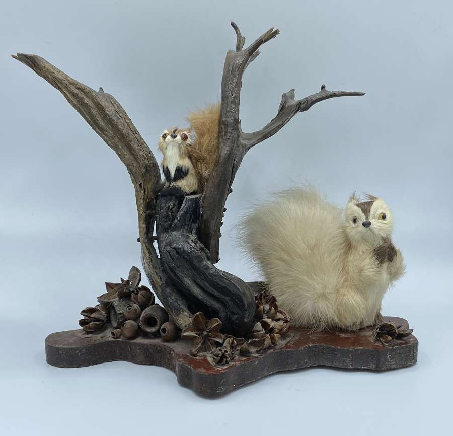Antique Early 1900s Taxidermy Real Fur Minature Squirrels On Base
