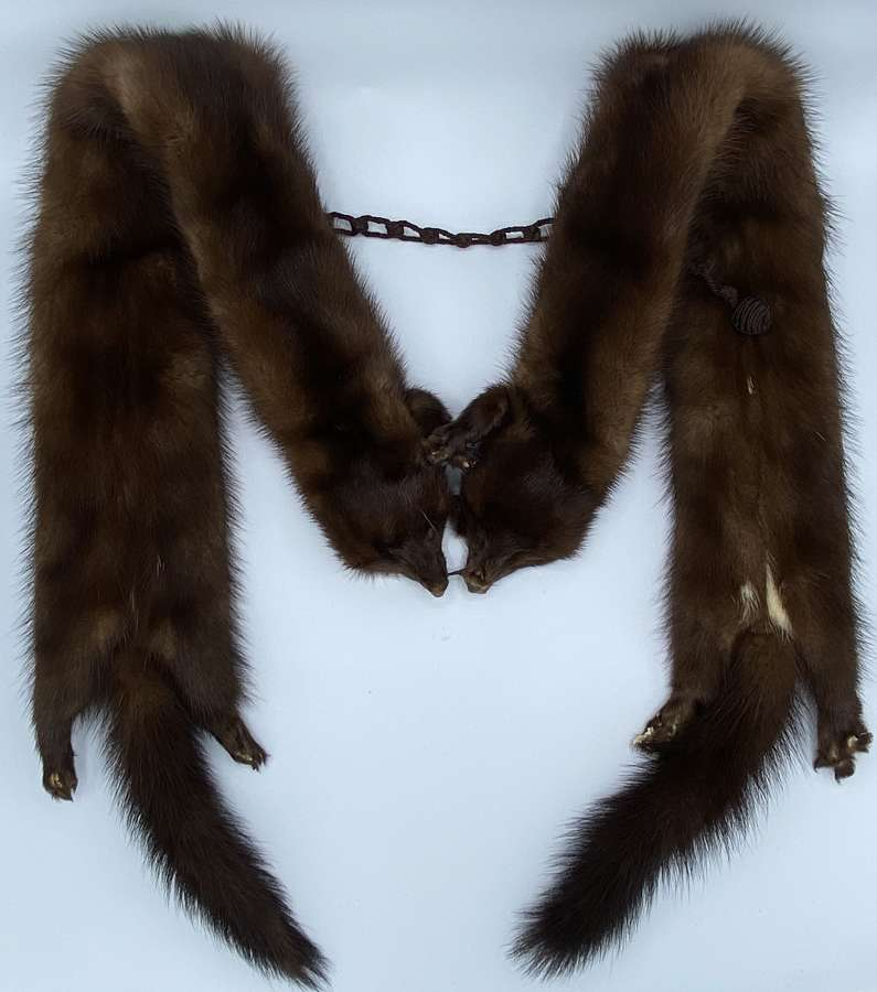 Quality Antique French Women's Taxidermy Double Mink Scarf Stole
