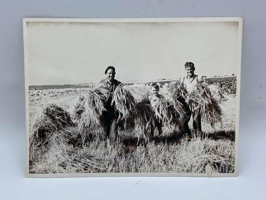 WW2 British Army Off Duty Commandos Farming With Boy Large Photograph